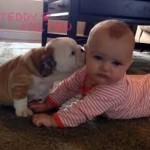 puppy_kisses_baby-150x150